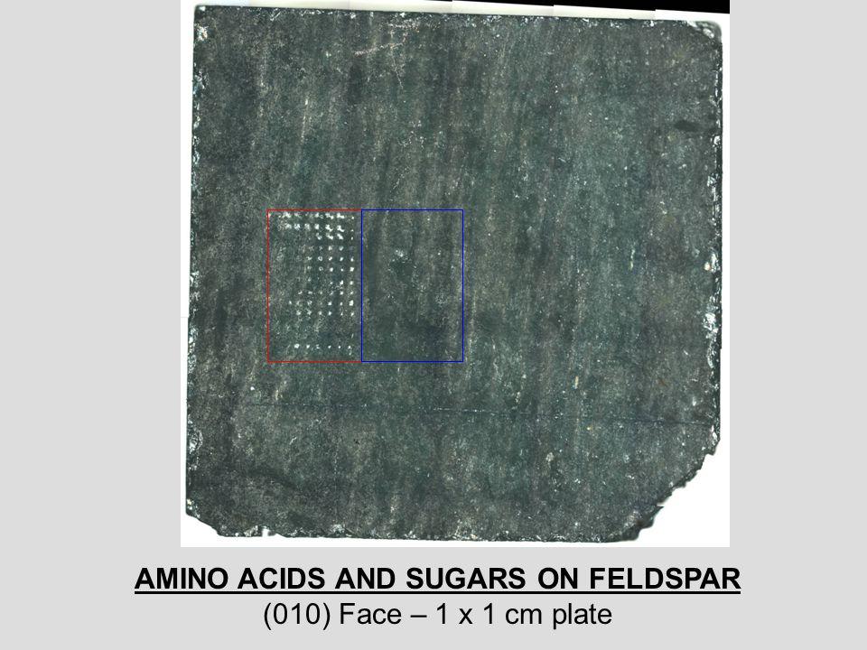 AMINO ACIDS AND SUGARS ON FELDSPAR (010) Face – 1 x 1 cm plate