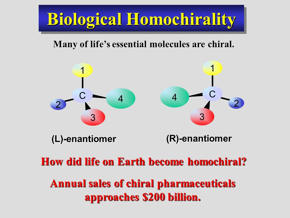 Biological Homochirality Many of life's essential molecules are chiral.