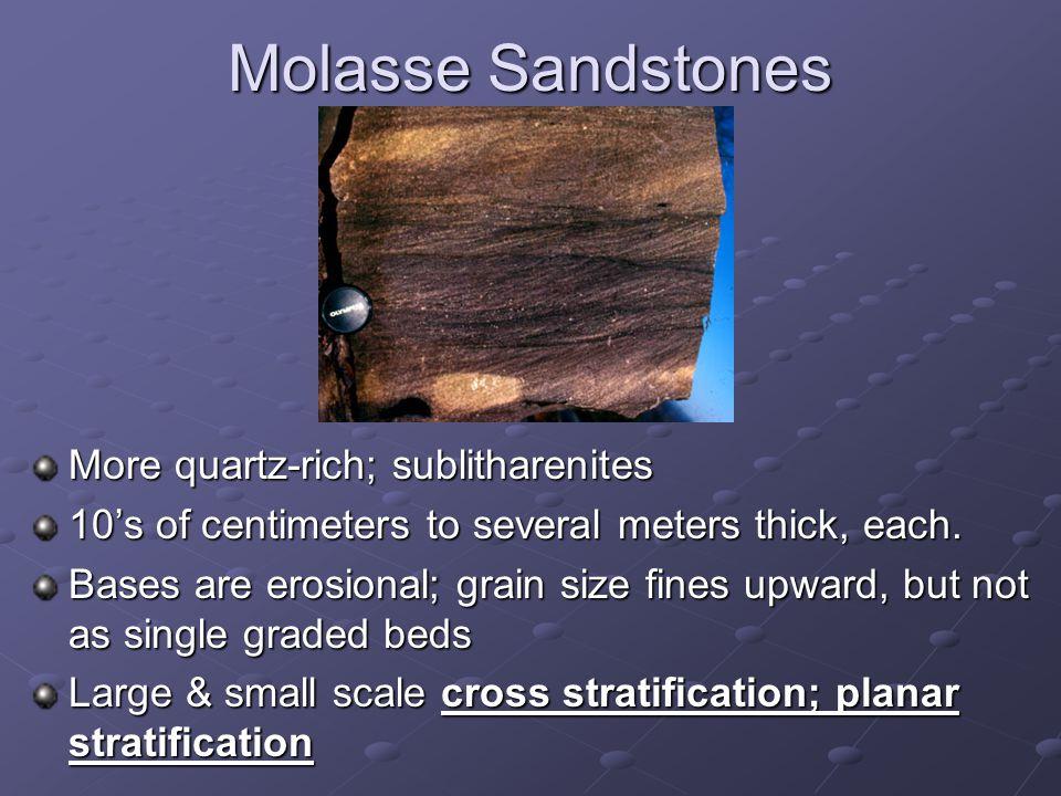 Molasse Sandstones More quartz-rich; sublitharenites 10's of centimeters to several meters thick, each.