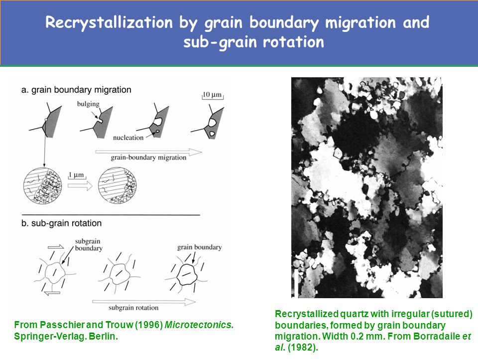Recrystallization by grain boundary migration and sub-grain rotation From Passchier and Trouw (1996) Microtectonics.