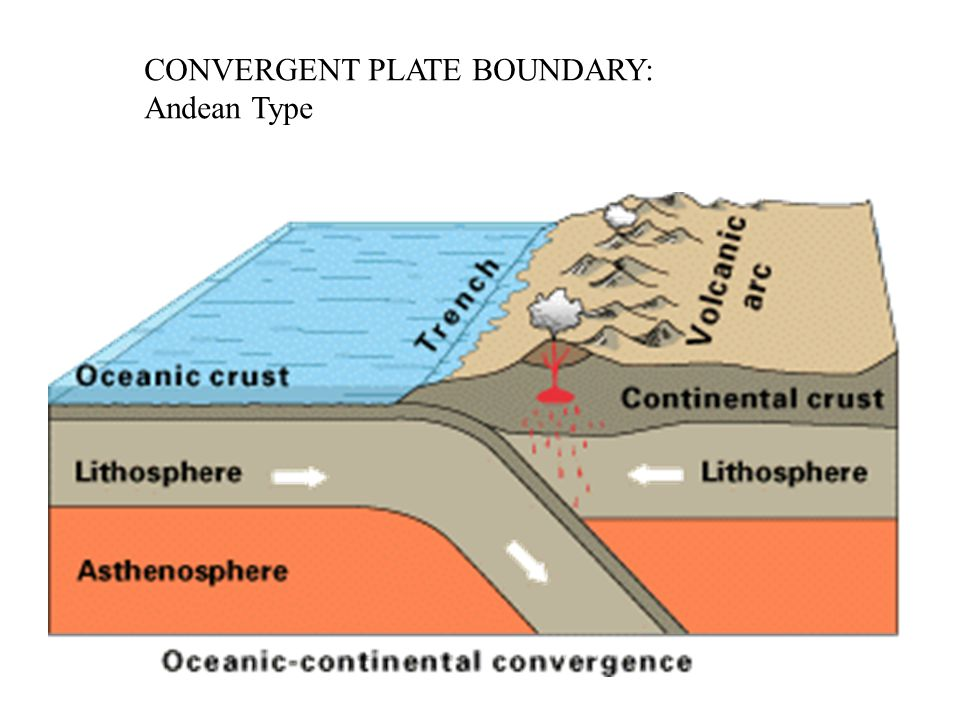 CONVERGENT PLATE BOUNDARY: Andean Type