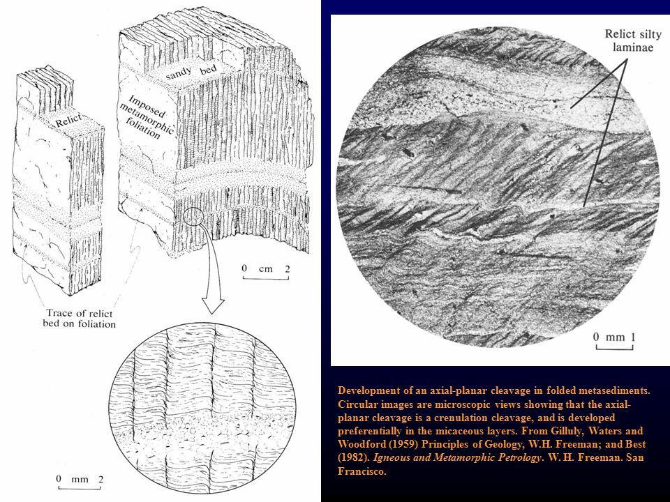 Development of an axial-planar cleavage in folded metasediments. Circular images are microscopic views showing that the axial- planar cleavage is a cr