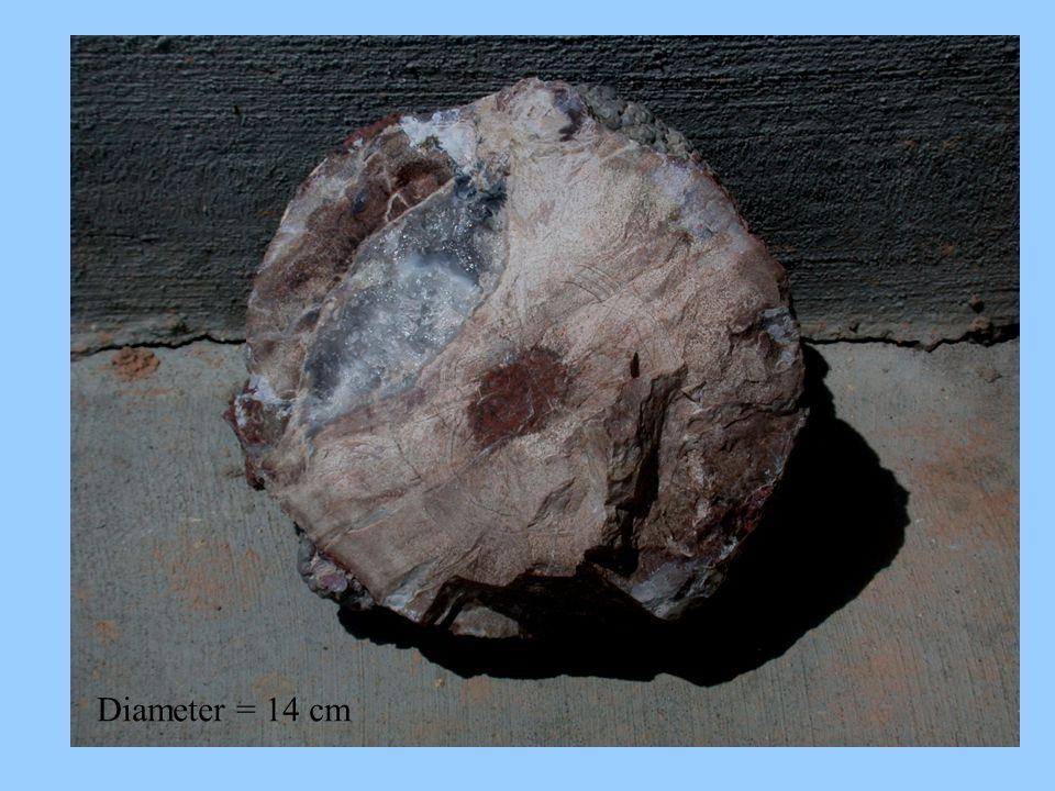 Diameter = 14 cm