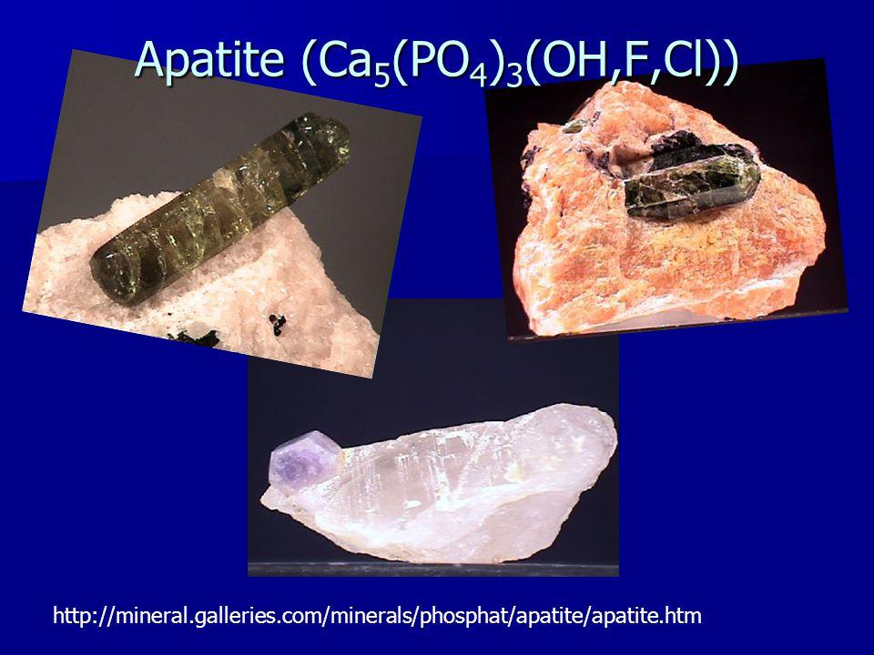 Apatite (Ca 5 (PO 4 ) 3 (OH,F,Cl))
