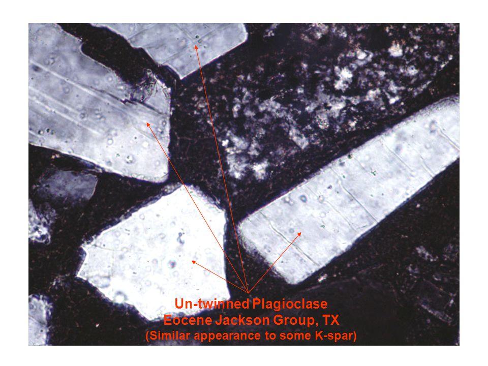 Un-twinned Plagioclase Eocene Jackson Group, TX (Similar appearance to some K-spar)