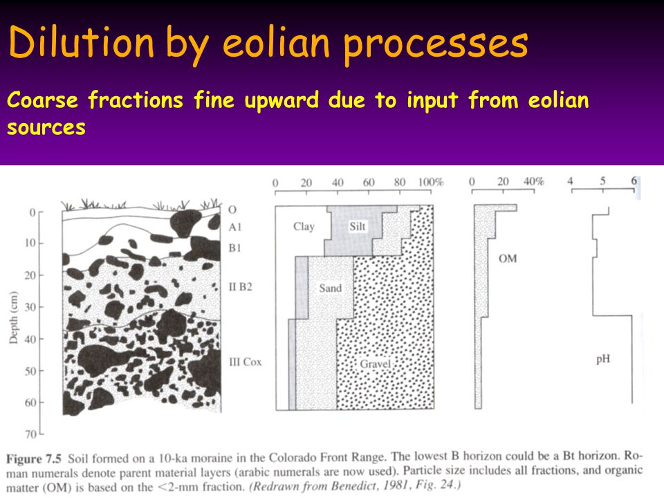 Dilution by eolian processes Coarse fractions fine upward due to input from eolian sources