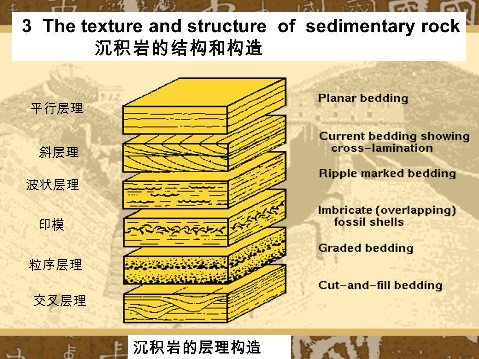 3 The texture and structure of sedimentary rock 沉积岩的结构和构造 平行层理 斜层理 波状层理 印模 粒序层理 交叉层理 沉积岩的层理构造