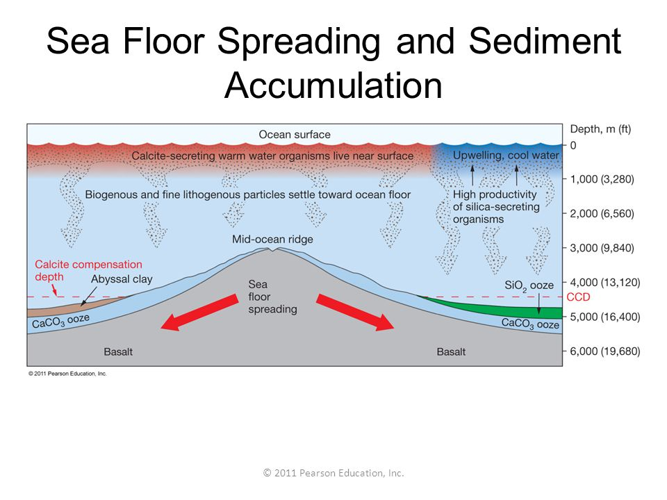 © 2011 Pearson Education, Inc. Sea Floor Spreading and Sediment Accumulation