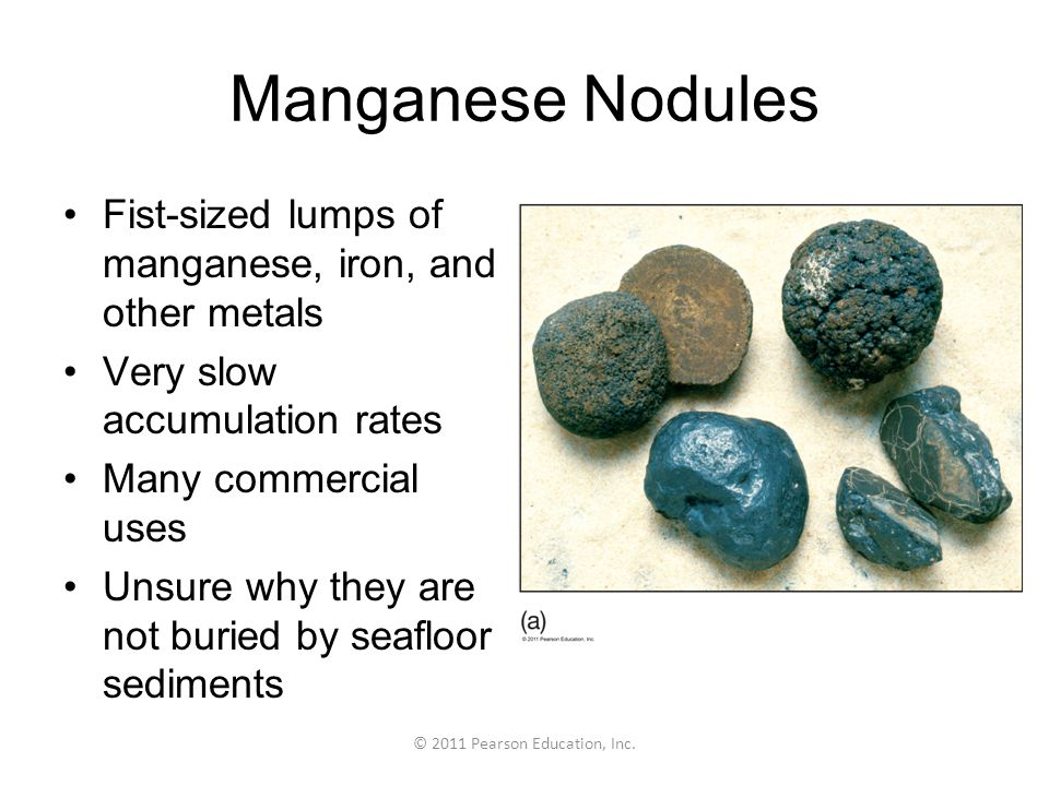 © 2011 Pearson Education, Inc. Manganese Nodules Fist-sized lumps of manganese, iron, and other metals Very slow accumulation rates Many commercial us