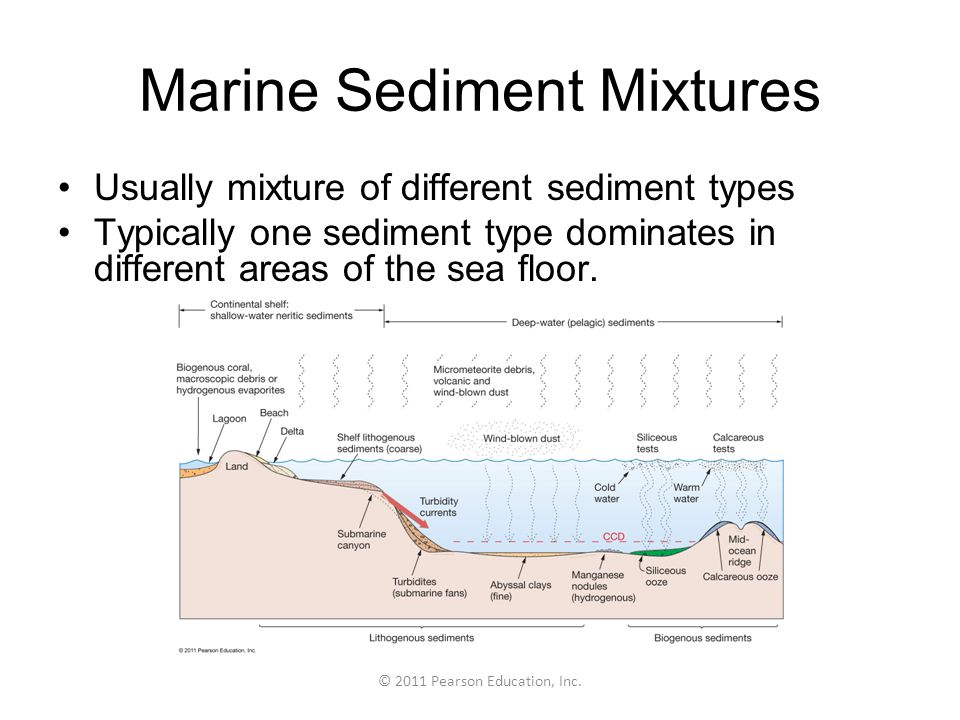 © 2011 Pearson Education, Inc. Marine Sediment Mixtures Usually mixture of different sediment types Typically one sediment type dominates in different