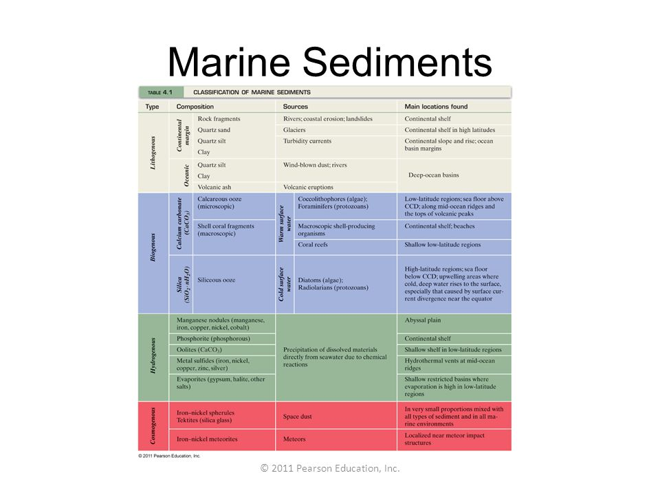 © 2011 Pearson Education, Inc. Marine Sediments