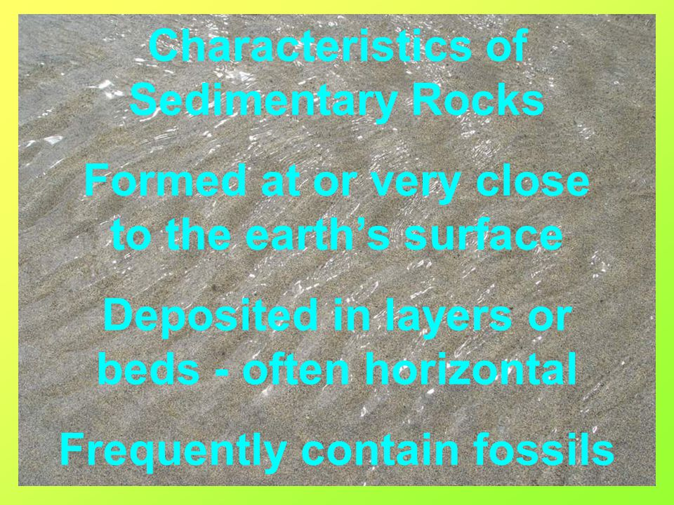 Greywacke/Turbidite or Muddy Sandstone Comprises up to 40% muddy matrix Possible fining upwards sequence/graded bedding Clasts are angular rock and mineral fragments 2-6mm Angular quartz grain 1cm Polymict/polymodal Texturally and mineralogically immature Fossils Rare Poorly sorted