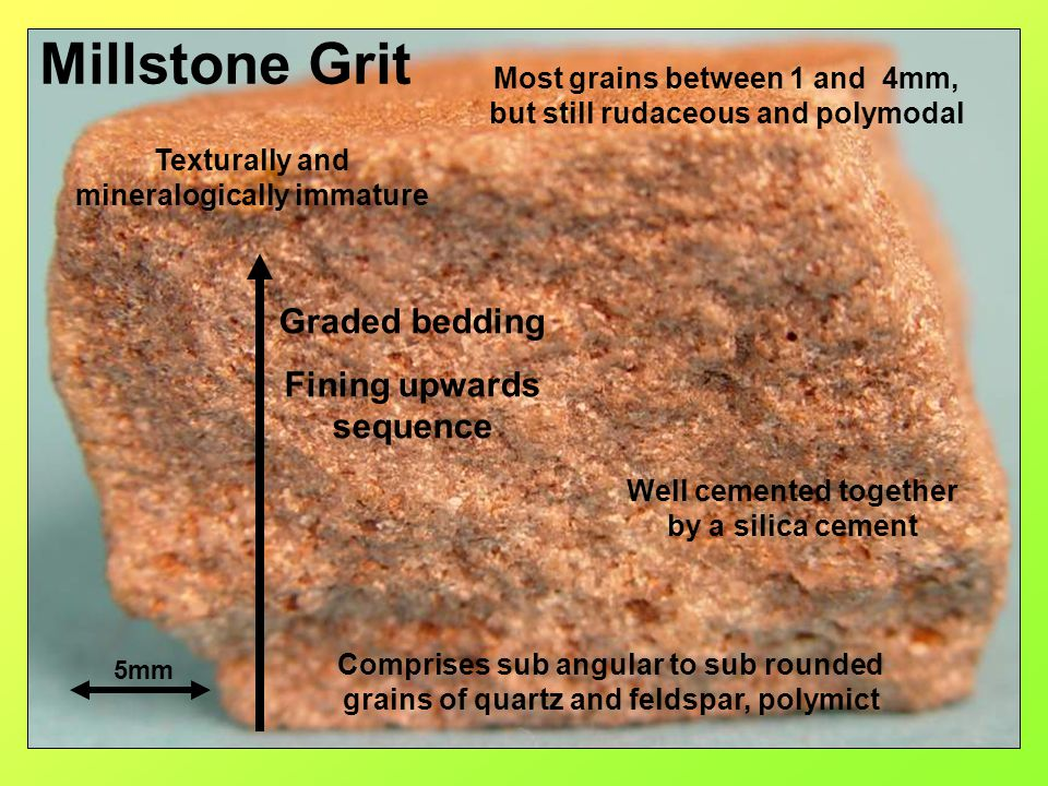 Millstone Grit 5mm Most grains between 1 and 4mm, but still rudaceous and polymodal Comprises sub angular to sub rounded grains of quartz and feldspar
