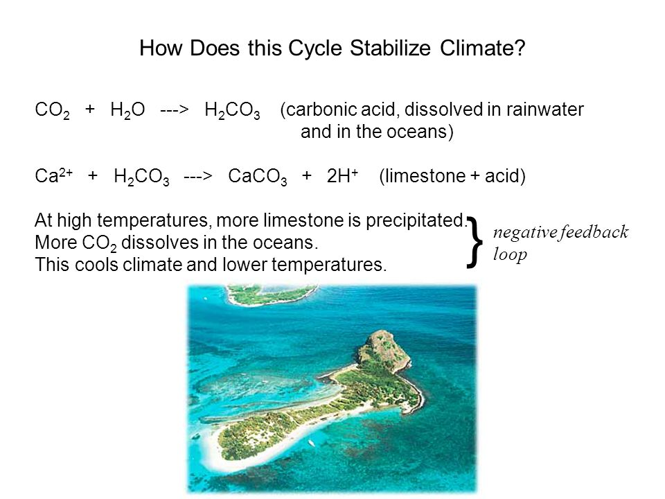 How Does this Cycle Stabilize Climate? CO 2 + H 2 O ---> H 2 CO 3 (carbonic acid, dissolved in rainwater and in the oceans) Ca 2+ + H 2 CO 3 ---> CaCO