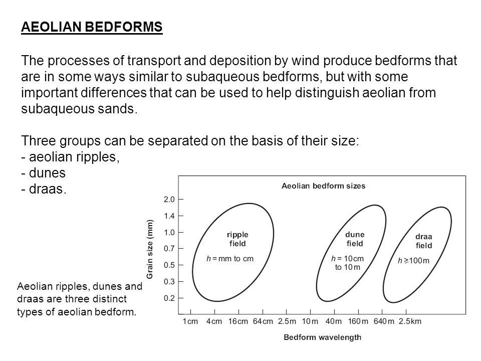 AEOLIAN BEDFORMS Aeolian ripples in modern desert sands.