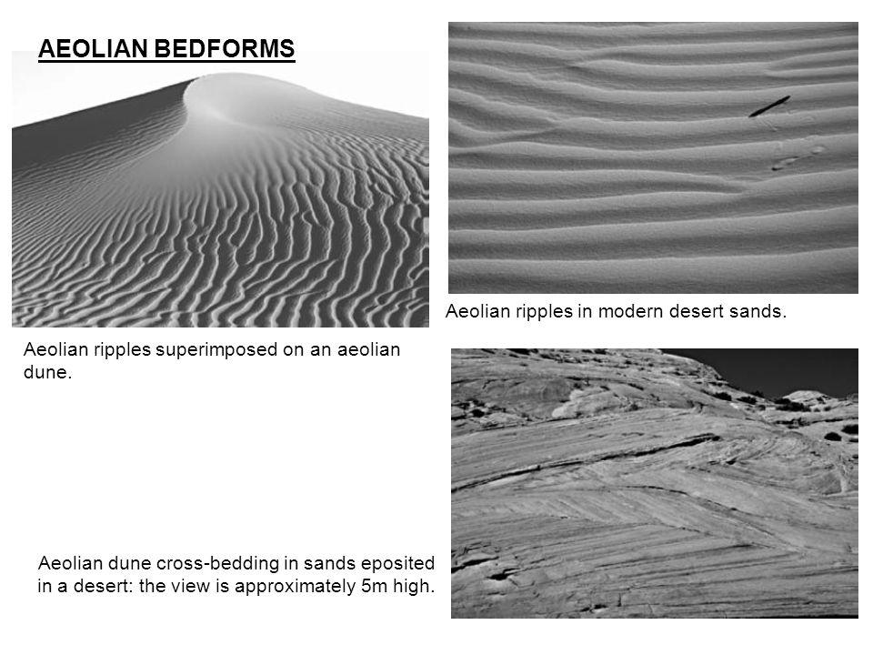 AEOLIAN BEDFORMS Aeolian ripples in modern desert sands. Aeolian ripples superimposed on an aeolian dune. Aeolian dune cross-bedding in sands eposited