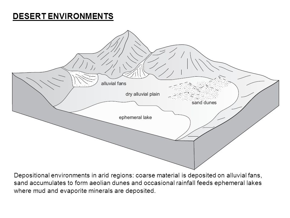 DESERT ENVIRONMENTS Depositional environments in arid regions: coarse material is deposited on alluvial fans, sand accumulates to form aeolian dunes a