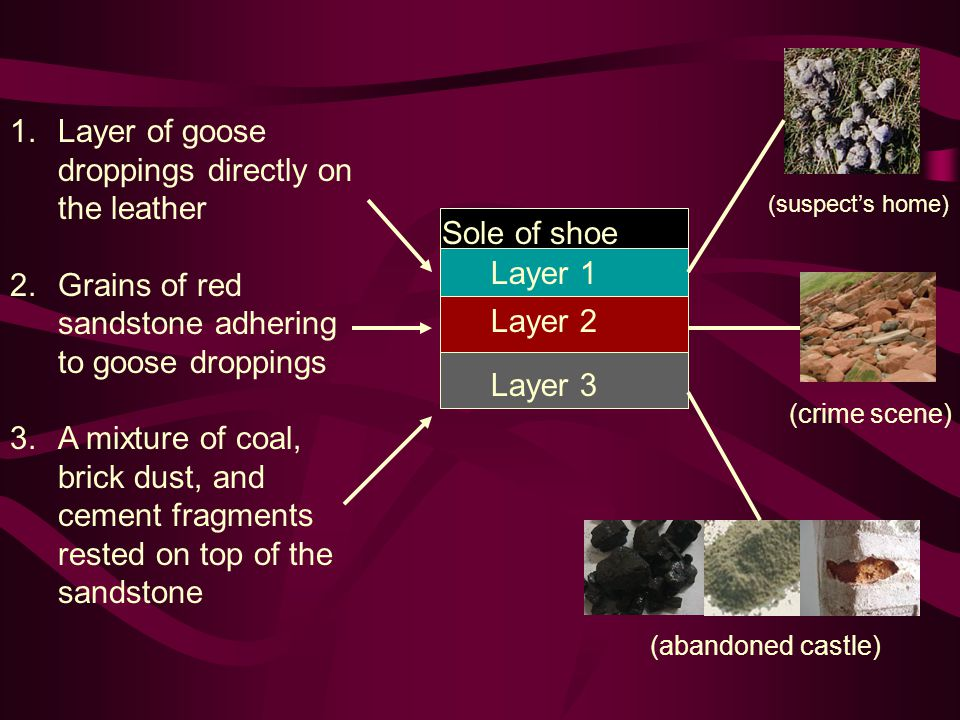 1.Layer of goose droppings directly on the leather 2.Grains of red sandstone adhering to goose droppings 3.A mixture of coal, brick dust, and cement f