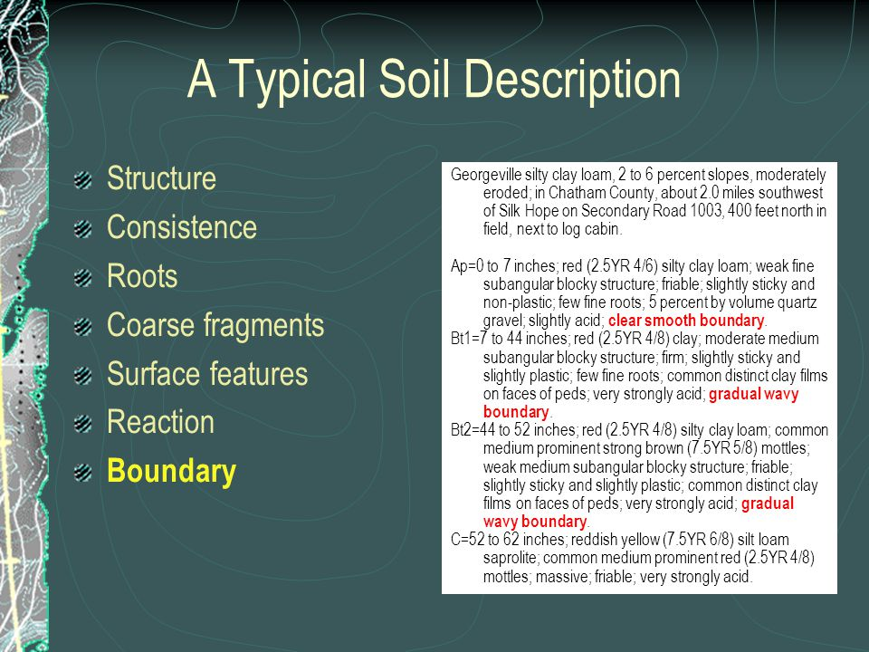 A Typical Soil Description Structure Consistence Roots Coarse fragments Surface features Reaction Boundary Georgeville silty clay loam, 2 to 6 percent slopes, moderately eroded; in Chatham County, about 2.0 miles southwest of Silk Hope on Secondary Road 1003, 400 feet north in field, next to log cabin.