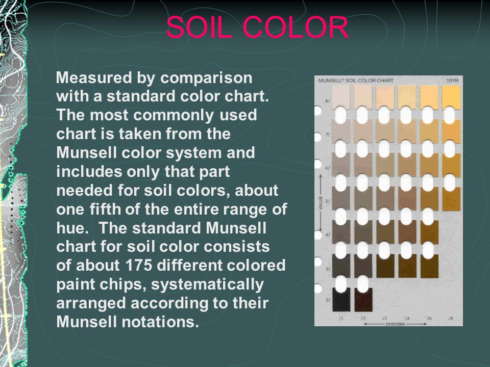 SOIL COLOR Measured by comparison with a standard color chart.