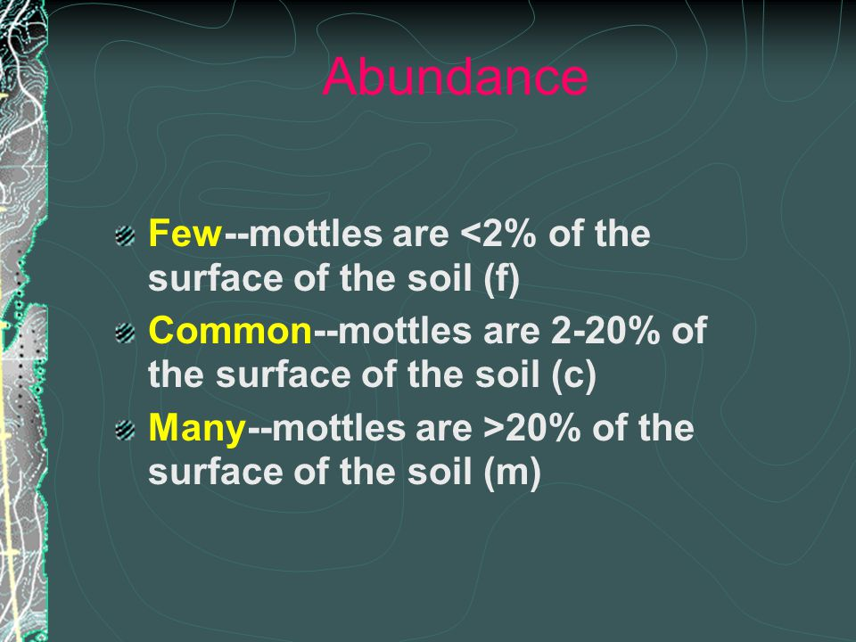 Abundance Few--mottles are <2% of the surface of the soil (f) Common--mottles are 2-20% of the surface of the soil (c) Many--mottles are >20% of the surface of the soil (m)