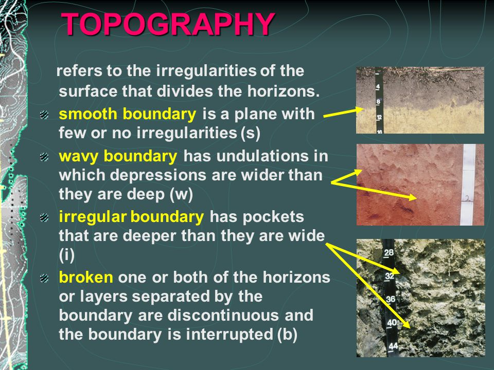 TOPOGRAPHY refers to the irregularities of the surface that divides the horizons.