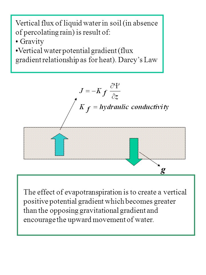 Vertical flux of liquid water in soil (in absence of percolating rain) is result of: Gravity Vertical water potential gradient (flux gradient relationship as for heat).