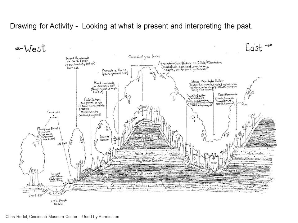 Drawing for Activity - Looking at what is present and interpreting the past.