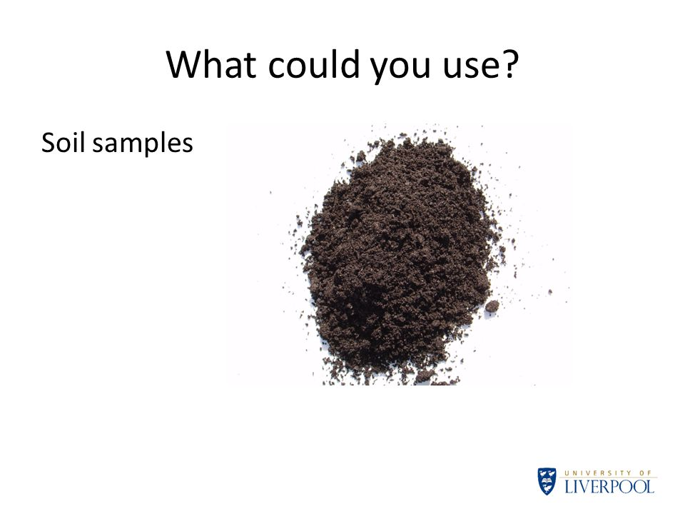 What could you use Soil samples