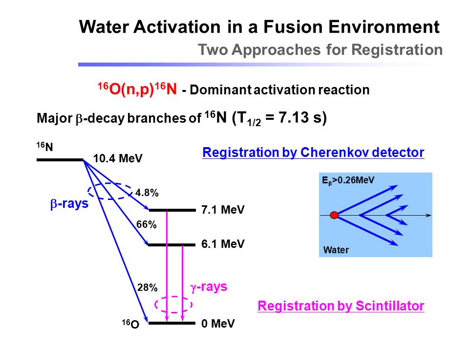 Water Activation in a Fusion Environment Two Approaches for Registration 16 O(n,p) 16 N - Dominant activation reaction Major  -decay branches of 16 N