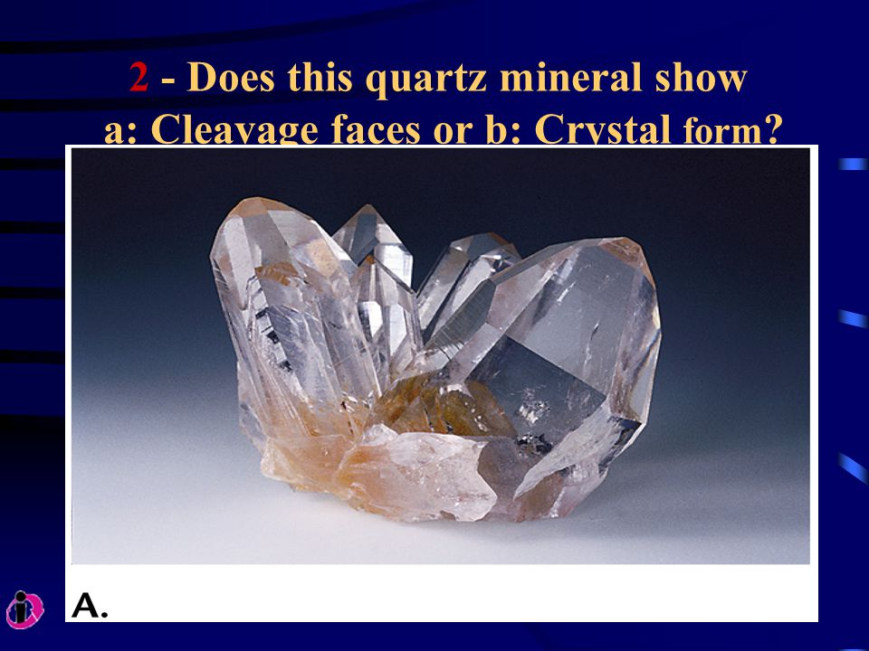 2 - Does this quartz mineral show a: Cleavage faces or b: Crystal form ?
