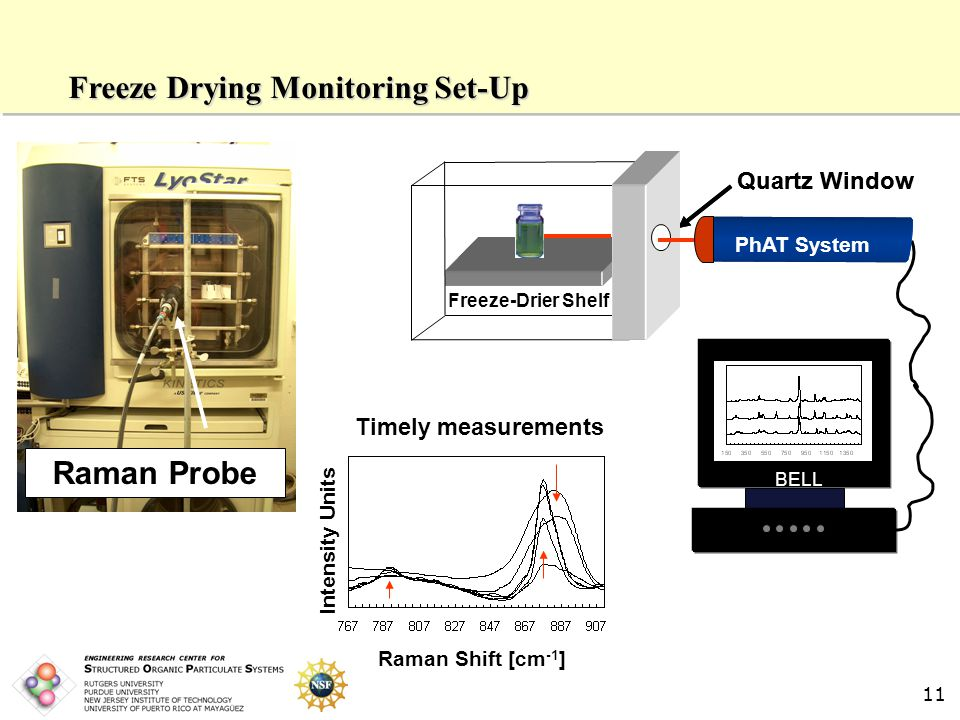 11 Freeze Drying Monitoring Set-Up Raman Probe Quartz Window BELL Quartz Window Freeze-Drier Shelf Timely measurements Intensity Units Raman Shift [cm -1 ] PhAT System