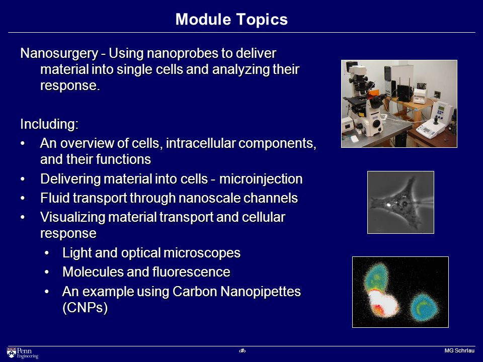 ‹#› MG Schrlau Module Topics Nanosurgery - Using nanoprobes to deliver material into single cells and analyzing their response.