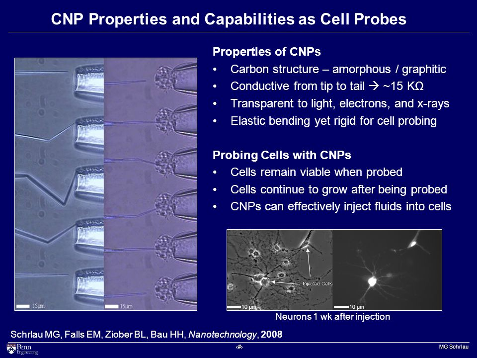 ‹#› MG Schrlau CNP Properties and Capabilities as Cell Probes Schrlau MG, Falls EM, Ziober BL, Bau HH, Nanotechnology, 2008 Properties of CNPs Carbon structure – amorphous / graphitic Conductive from tip to tail  ~15 KΩ Transparent to light, electrons, and x-rays Elastic bending yet rigid for cell probing Probing Cells with CNPs Cells remain viable when probed Cells continue to grow after being probed CNPs can effectively inject fluids into cells 10 μm Neurons 1 wk after injection