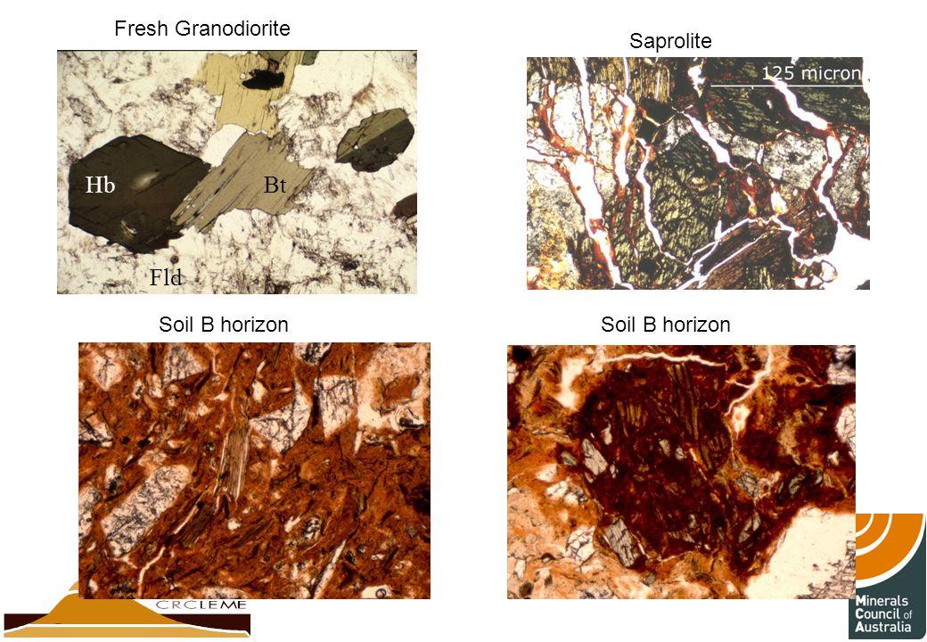 Fresh Granodiorite Saprolite Soil B horizon BtHb Fld