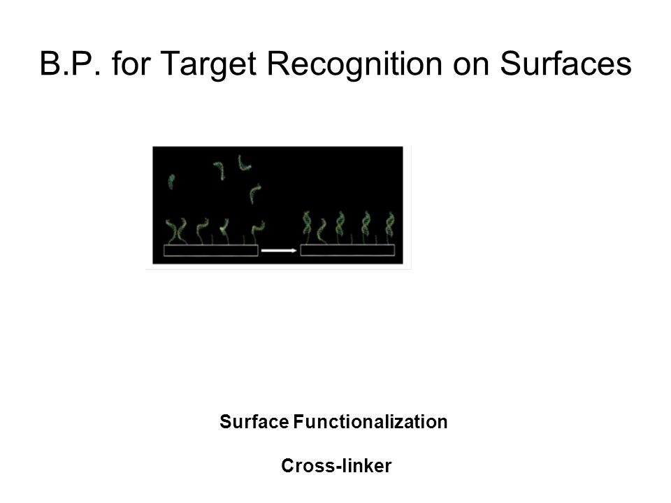 B.P. for Target Recognition on Surfaces Surface Functionalization Cross-linker