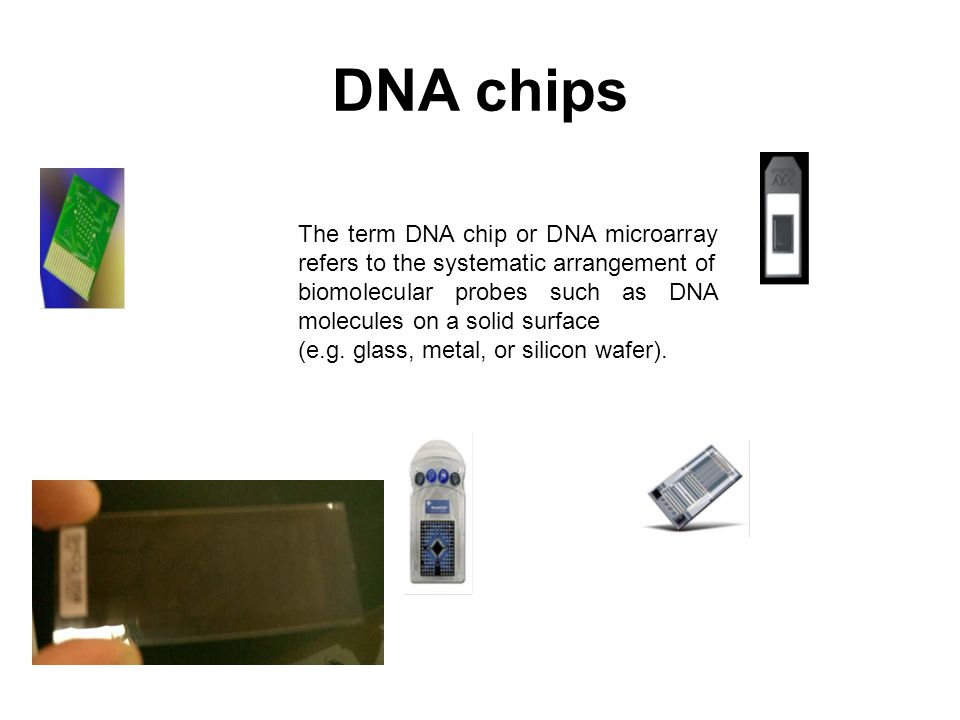 DNA chips The term DNA chip or DNA microarray refers to the systematic arrangement of biomolecular probes such as DNA molecules on a solid surface (e.g.