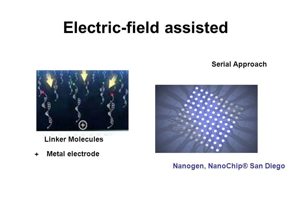 Electric-field assisted Nanogen, NanoChip® San Diego Linker Molecules Metal electrode + Serial Approach