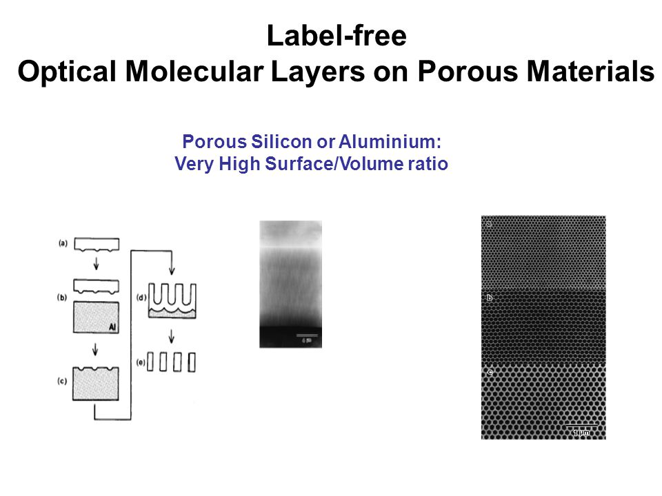 Label-free Optical Molecular Layers on Porous Materials Porous Silicon or Aluminium: Very High Surface/Volume ratio