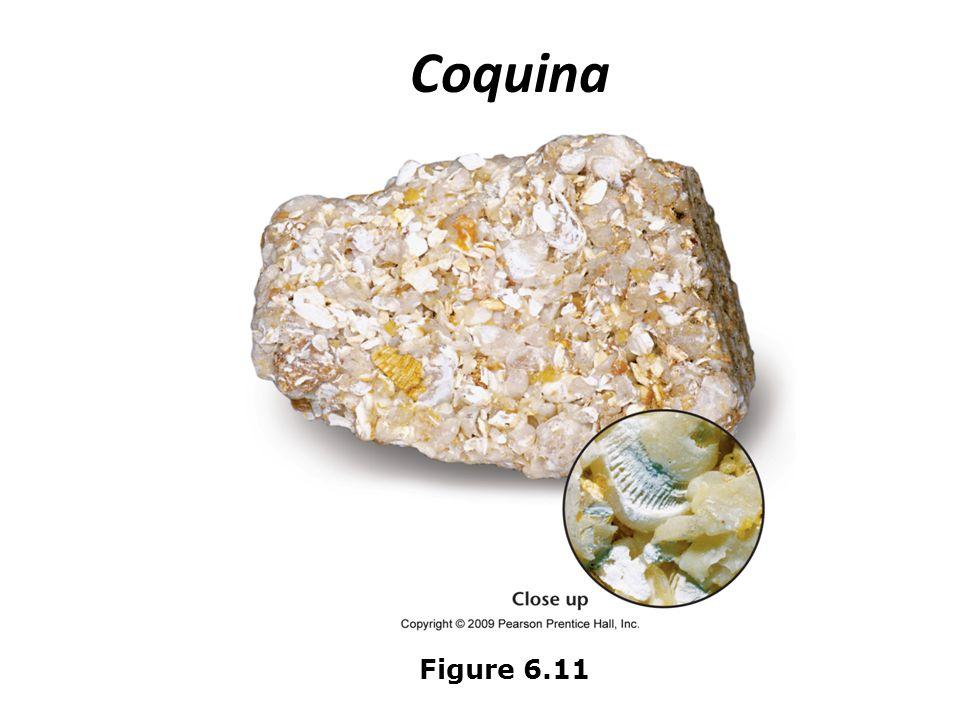 Coquina Figure 6.11