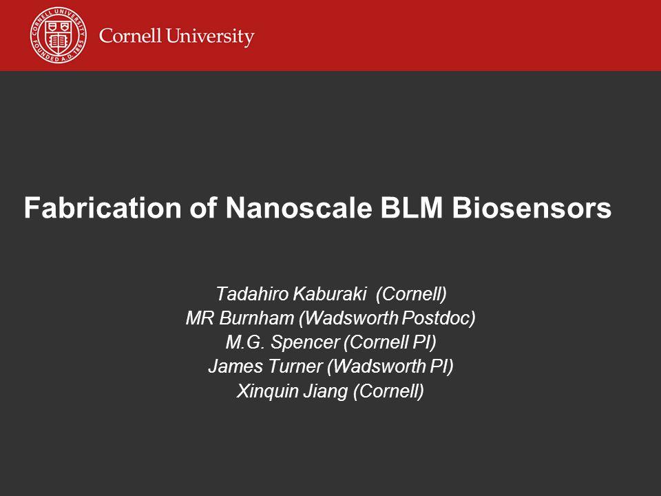 Fabrication of Nanoscale BLM Biosensors Tadahiro Kaburaki (Cornell) MR Burnham (Wadsworth Postdoc) M.G.