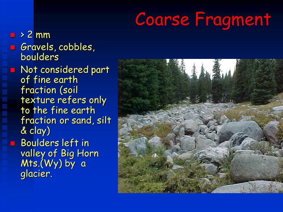 Coarse Fragment n > 2 mm n Gravels, cobbles, boulders n Not considered part of fine earth fraction (soil texture refers only to the fine earth fractio