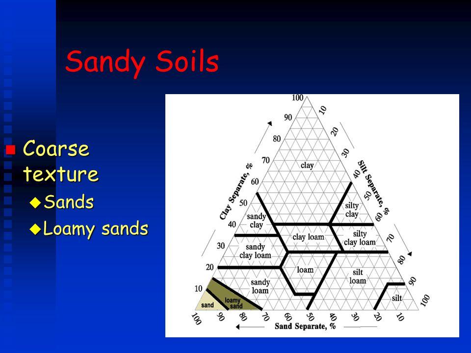 Sandy Soils n Coarse texture u Sands u Loamy sands