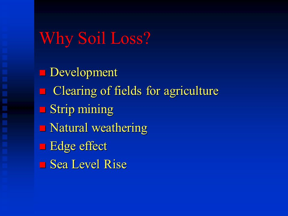 Why Soil Loss? n Development n Clearing of fields for agriculture n Strip mining n Natural weathering n Edge effect n Sea Level Rise
