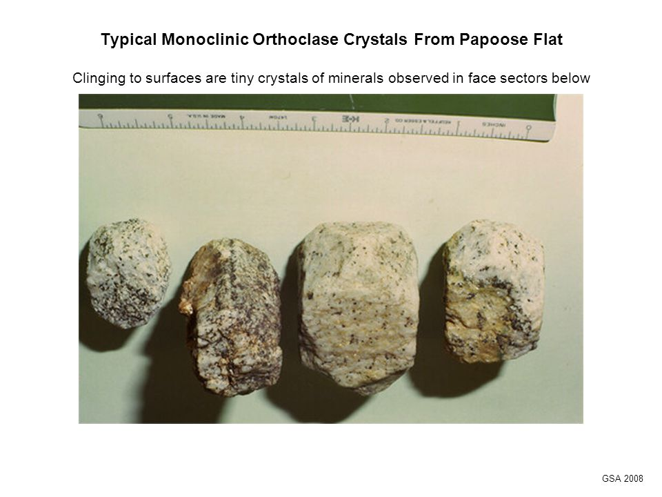 Typical Monoclinic Orthoclase Crystals From Papoose Flat Clinging to surfaces are tiny crystals of minerals observed in face sectors below GSA 2008