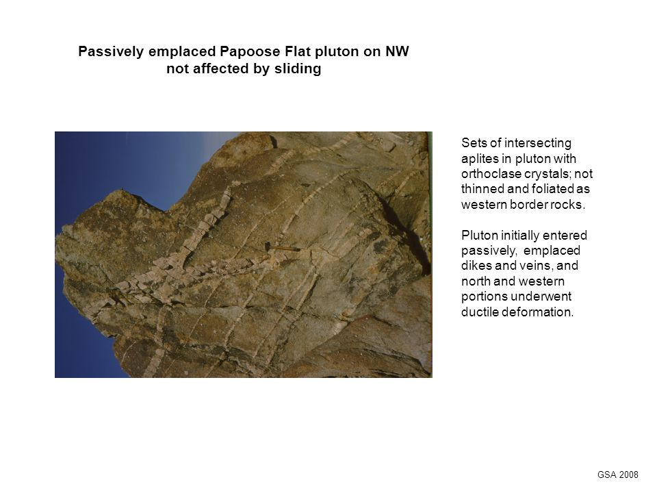 Sets of intersecting aplites in pluton with orthoclase crystals; not thinned and foliated as western border rocks.