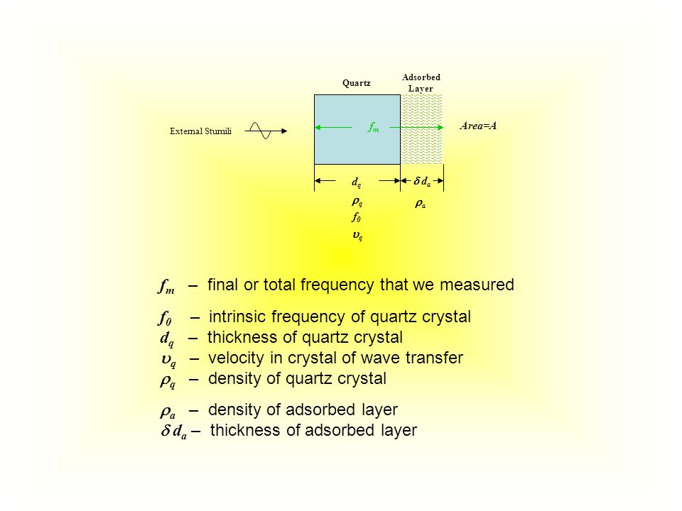 Quartz Adsorbed Layer dqdq  d a aa qq f0f0 qq fmfm f m – final or total frequency that we measured f 0 – intrinsic frequency of quartz crystal