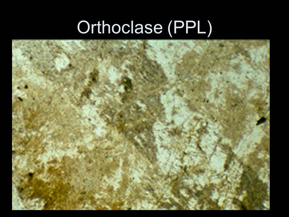 Orthoclase (PPL)