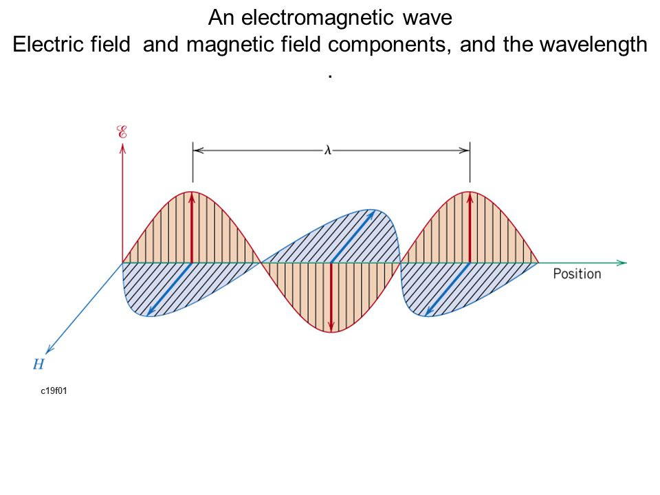 c19f01 An electromagnetic wave Electric field and magnetic field components, and the wavelength.