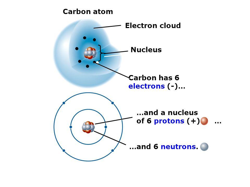 Carbon atom Electron cloud Nucleus Carbon has 6 electrons (-)… …and a nucleus of 6 protons (+) … …and 6 neutrons.